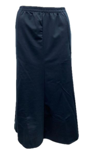 Picture of Skirt 010 JKD