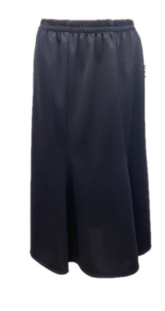 Picture of Skirt4405